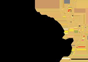 Logo Dorit Schwartz