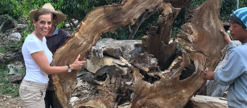 A beautiful piece of Acacia found during Dorit Schwartz's trip to Thailand