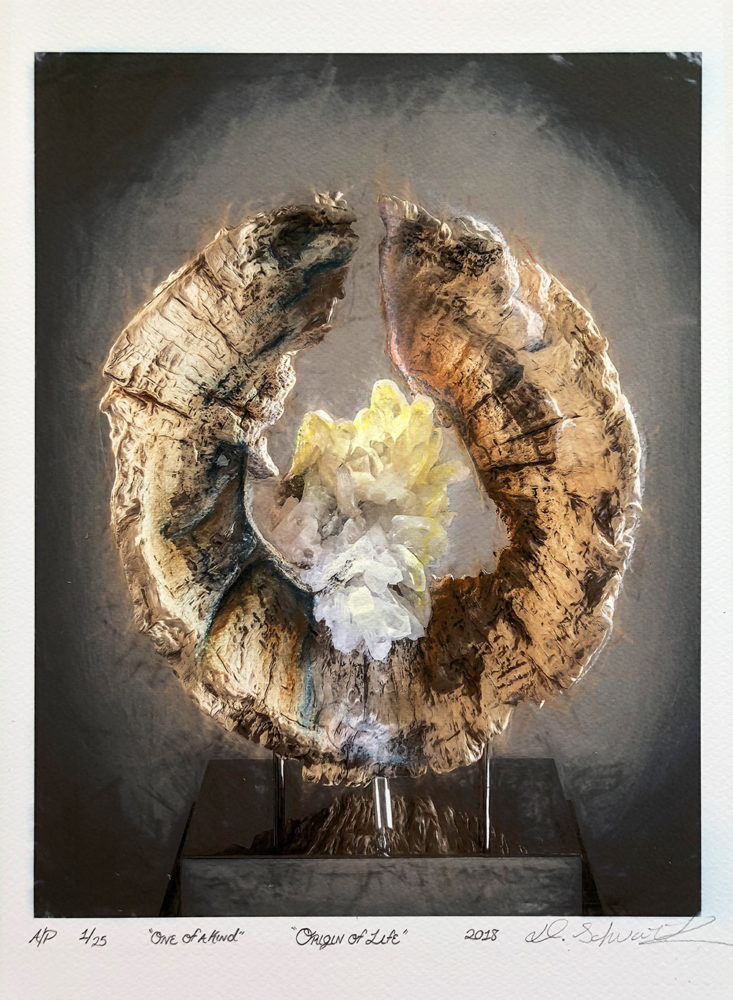 Origin of Life by Sculptor Dorit Schwartz MIXED MEDIA on PAPER PRINT One of A Kind LIMITED Collection