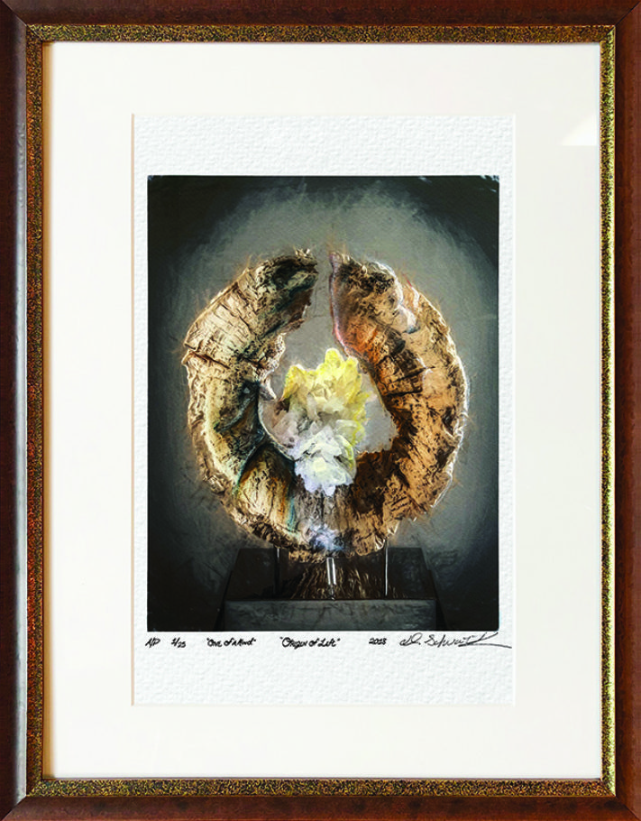 Origin of Life One of A Kind Collection Hand Enhanced Lithographs by Fine Artist Dorit Schwartz Numbered Limited Edition Japanese Series